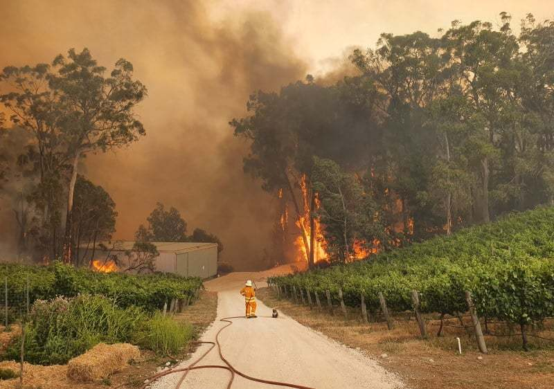 Adelaide-Hills-Bushfire-Wineries-Every-Bottle-Counts-Hurley-Hotel-Group